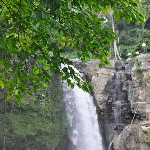 Waterfall Ubud Bali ©ItsM.Sherif