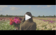 Video project : Another day in the flowerfields